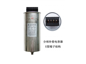 cylindrical type low voltage filter capacitor   TYPE E