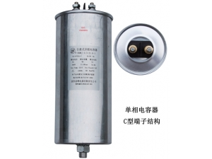 single-phase capacitor   TYPE C