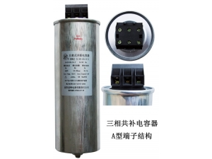 cylindrical type low voltage filter capacitor   TYPE A