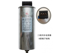 cylindrical type low voltage filter capacitor   type B