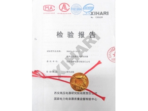 Report-of-the-national-power-capacitor-quality-supervision-and-inspection-center-of-the-low-voltage-capacitor-in-2013