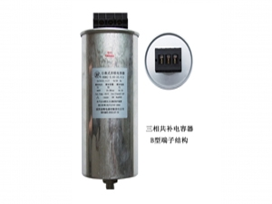 three phase co capacitor   TYPE B